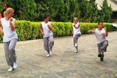 Cultural Keys' Chinese Martial Arts Programs #17