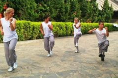 Cultural Keys' Chinese Martial Arts Programs #17