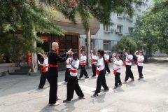Cultural Keys' Chinese Martial Arts Programs #3