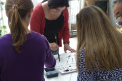 Cultural Keys' Chinese Painting  Workshops #10