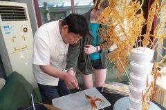 Cultural Keys' Chinese Sugar Art Workshop #9