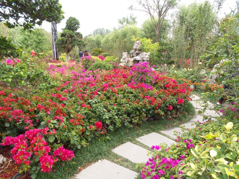 Beijing International Horticultural Expo #8