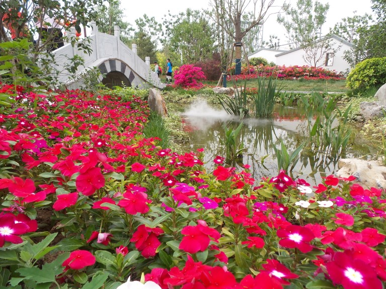 Beijing International Horticultural Expo #1